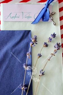Decro_botez blue red and lavanda (6)