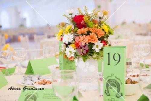 Decro_nunta colorata la cort 2 (16)