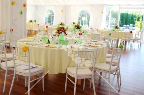 Decro_nunta colorata la cort (2)