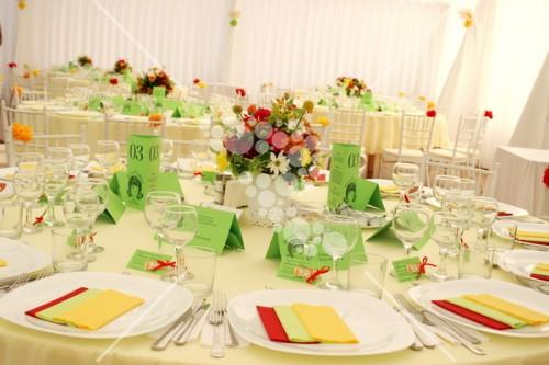 Decro_nunta colorata la cort (7)