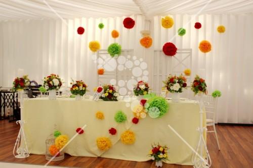 Decro_nunta colorata la cort (8)