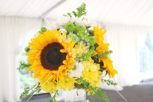 Decro_nunta la cort floarea_soarelui (11)