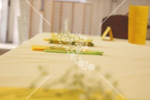 Decro_nunta la cort floarea_soarelui (15)