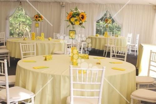 Decro_nunta la cort floarea_soarelui (16)