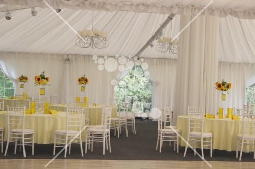 Decro_nunta la cort floarea_soarelui (5)