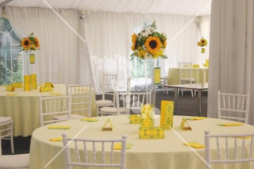 Decro_nunta la cort floarea_soarelui (8)