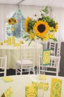 Decro_nunta la cort floarea_soarelui (9)